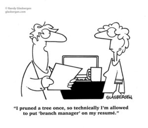 job_search_manager